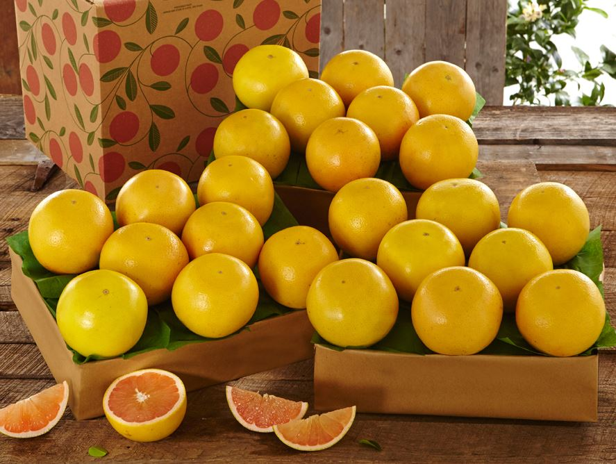 florida-ruby-red-grapefruit-for-sale-online-102820_02.jpg