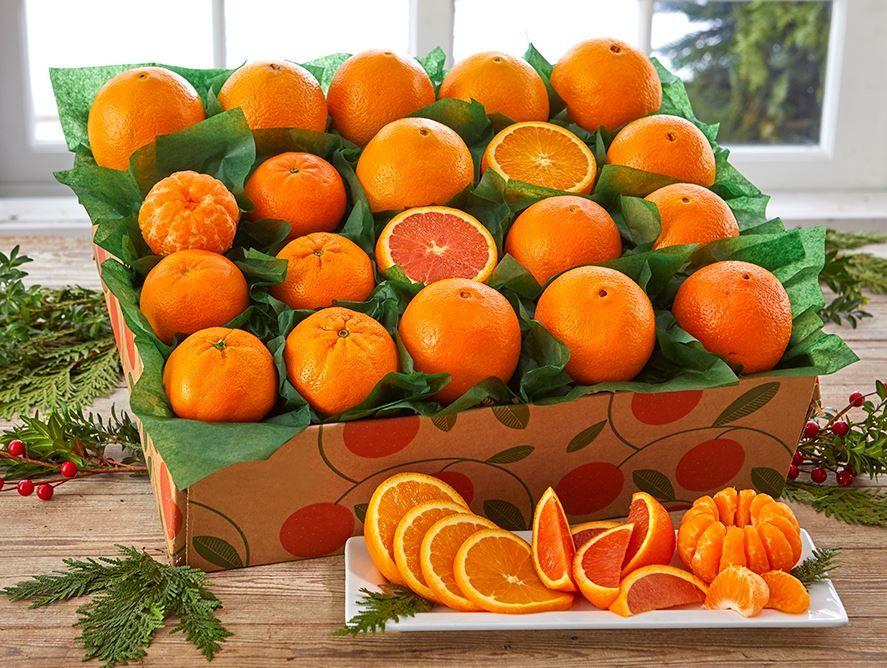 Hale Groves Orange Extravaganza