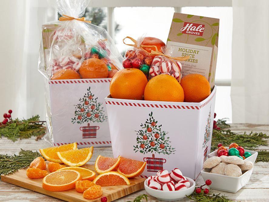 Holiday Grove Gift Box