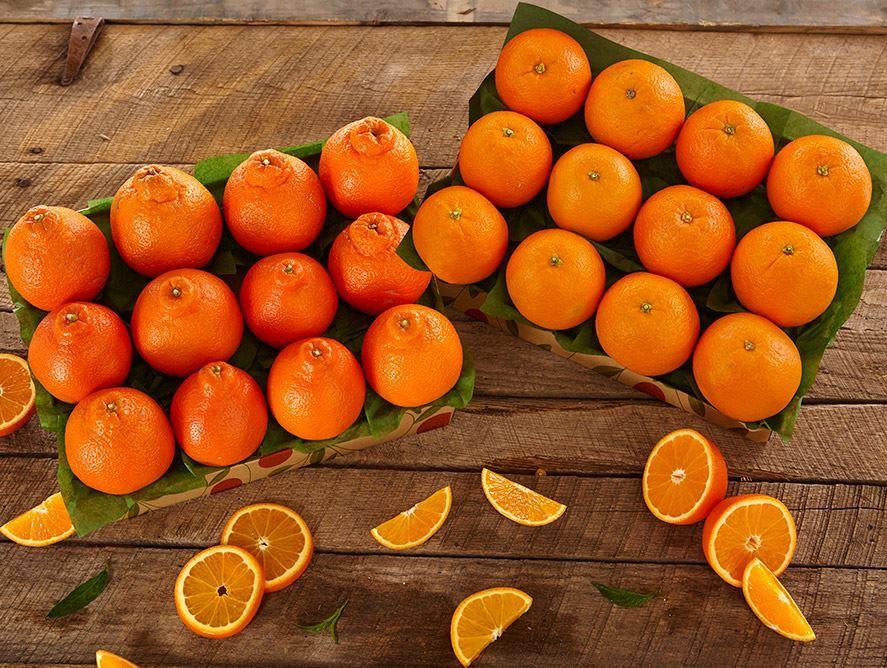 honeybells-navel-oranges-121319_02.jpg