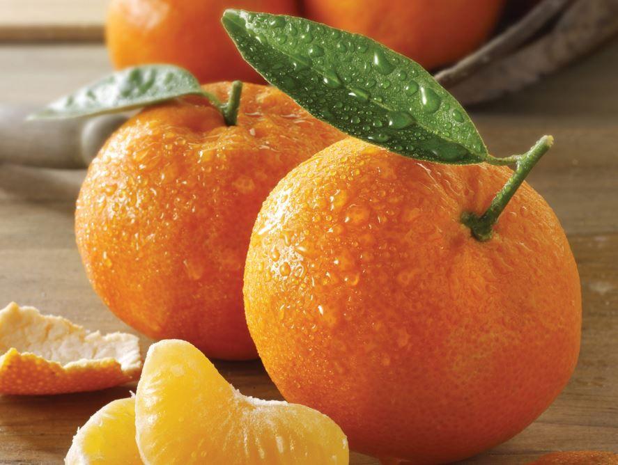 Honey Sweet Tangerines