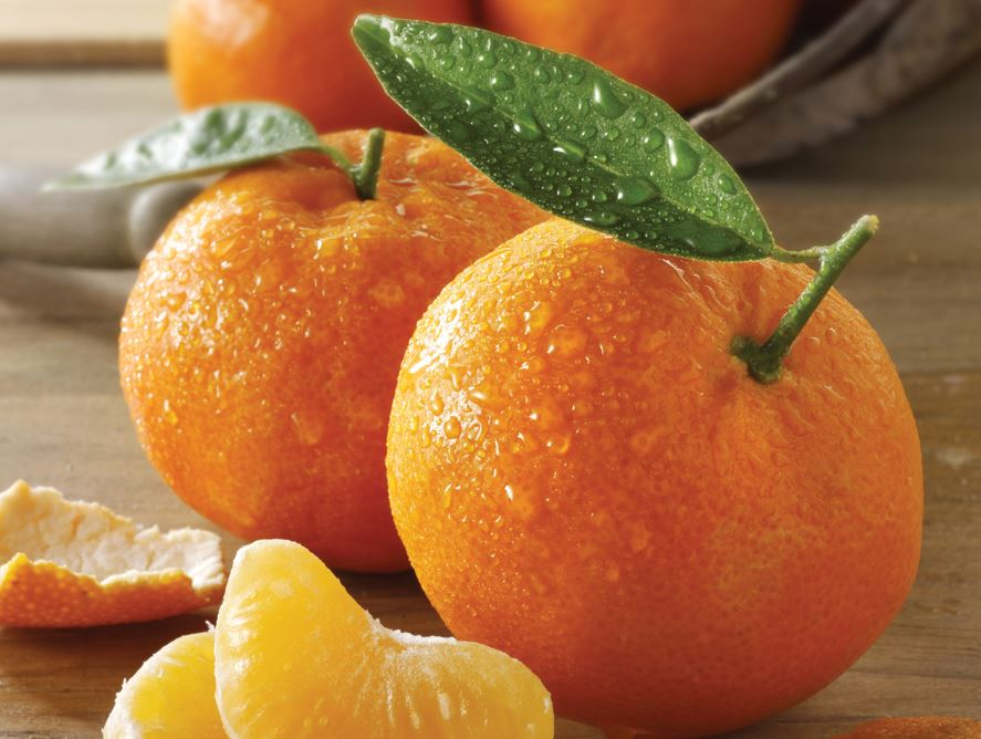 Honey Sweet Tangerines