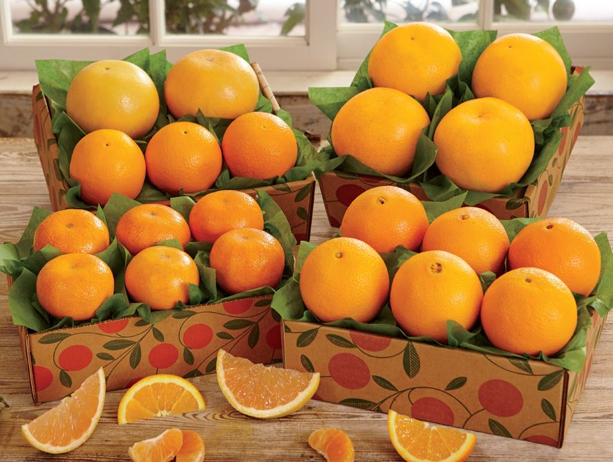 Citrus Sampler Trays