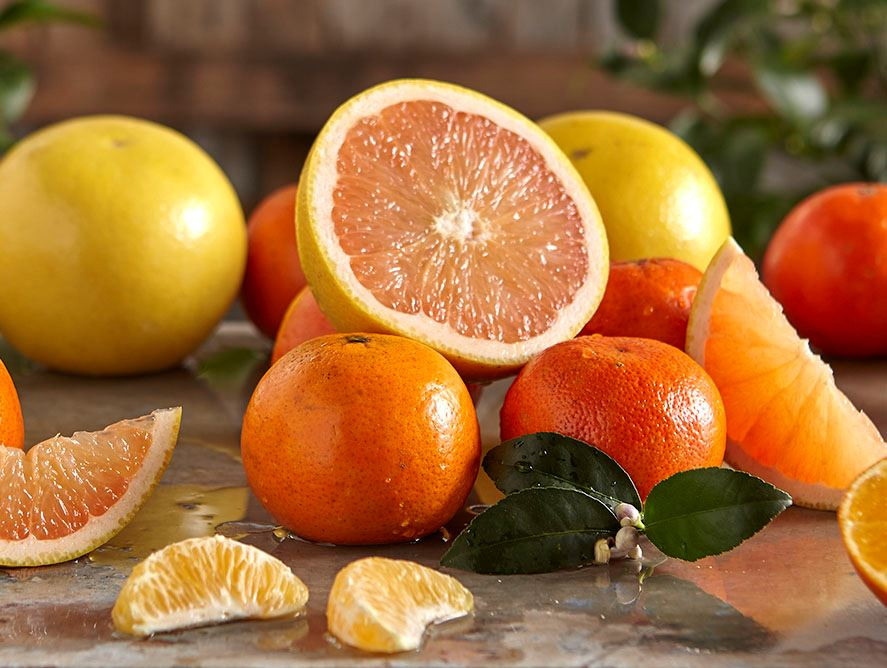 Temple Oranges and Ruby Red Grapefruit