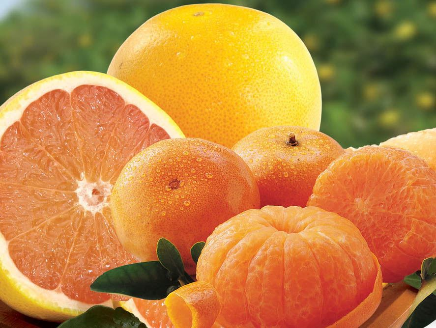 Tangerines and Ruby Red Grapefruit